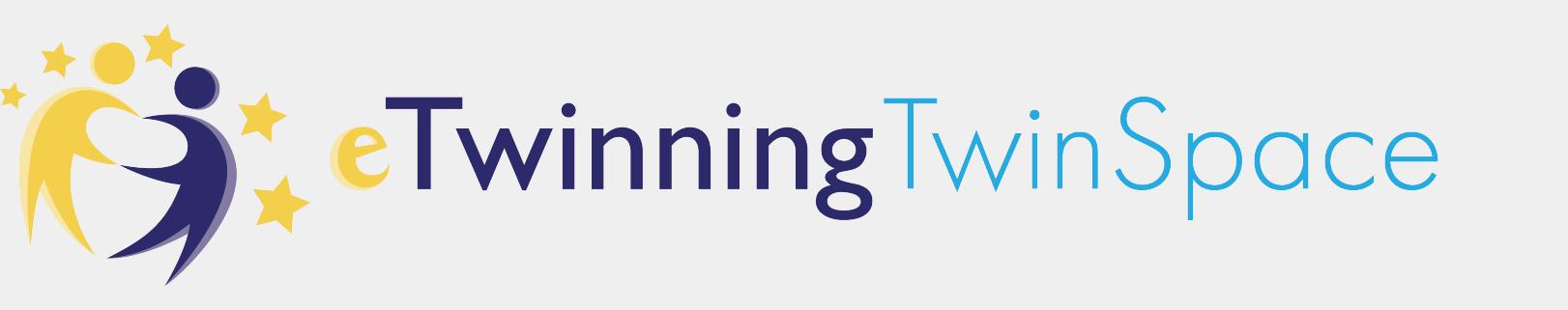 eTwinning Twin Space